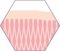 CRISTAL Skin Hautspannung wiederhergestell